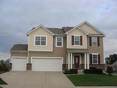 Turtle Creek Twp Single Family Home For Sale: 1842 Greentree Meadows Drive