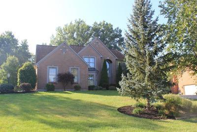 Single Family Home For Sale: 597 Doe Run Court
