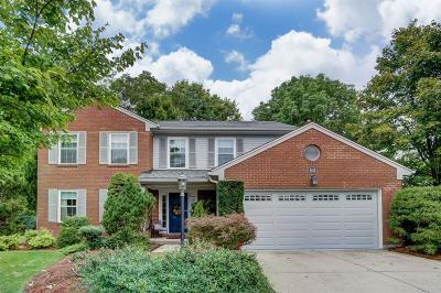 Green Twp Single Family Home For Sale: 4528 Hutchinson Glen Drive