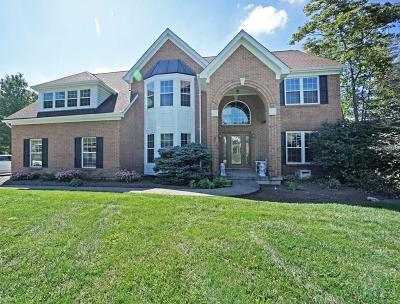 Miami Twp Single Family Home For Sale: 5017 Silvermine Court