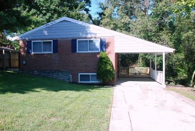Delhi Twp Single Family Home For Sale: 5418 Cannas Drive