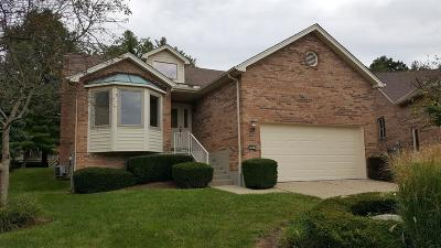 Green Twp Condo/Townhouse For Sale: 5803 Harbour Pointe Drive