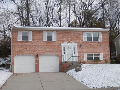 Green Twp Single Family Home For Sale: 2254 Fayhill Drive