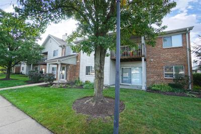 Butler County Condo/Townhouse For Sale: 8854 Eagleview Drive #3