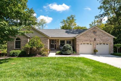 Crosby Twp, Harrison Twp, Miami Twp, Whitewater Twp, Morgan Twp, Ross Twp Single Family Home For Sale: 3842 Foxtail Lane