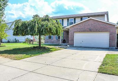 Fairfield Twp Single Family Home For Sale: 2977 Blue Heron Drive