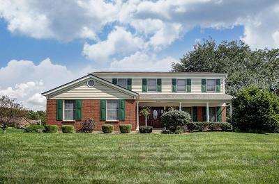 Delhi Twp Single Family Home For Sale: 1058 Lakeville Drive