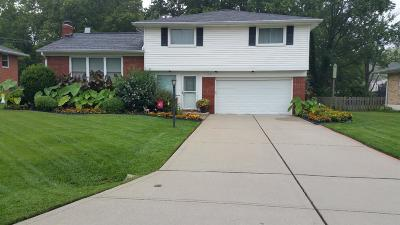 Cincinnati Single Family Home For Sale: 1216 Immaculate Lane