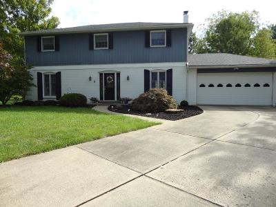 Hamilton County Single Family Home For Sale: 6060 Shelrich Court