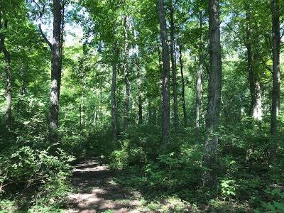 Highland County Residential Lots & Land For Sale: Dade Road