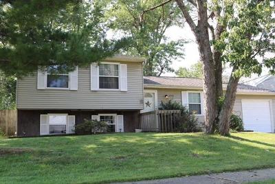 Crosby Twp, Harrison Twp, Miami Twp, Whitewater Twp, Morgan Twp, Ross Twp Single Family Home For Sale: 5708 Longfield Dr