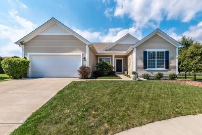 Single Family Home For Sale: 7345 Hoover Court