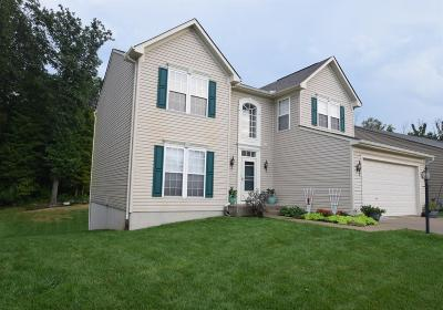 Hamilton Twp Single Family Home For Sale: 5485 Appaloosa Circle