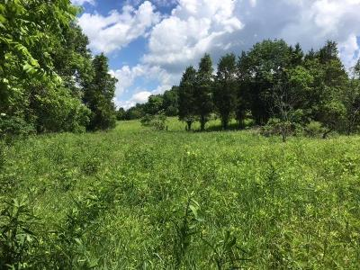 Adams County Residential Lots & Land For Sale: 1526 Suck Run Road