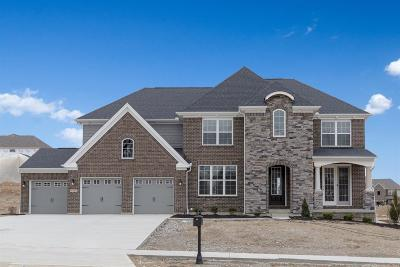 Green Twp Single Family Home For Sale: 5169 Halifax Drive