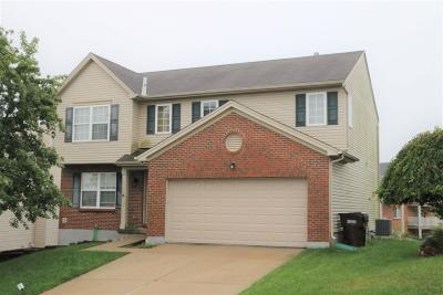 Cincinnati Single Family Home For Sale: 4877 Kleeman Green Drive