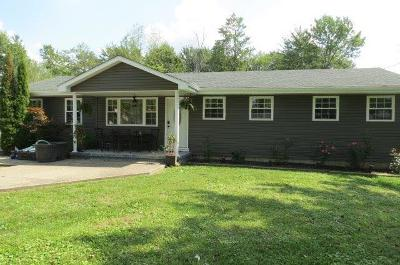 Adams County, Brown County, Clinton County, Highland County Single Family Home For Sale: 212 Sisterville Road