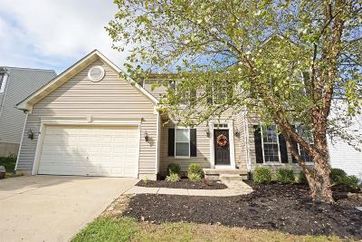 Lebanon Single Family Home For Sale: 491 Silverwood Farms Drive