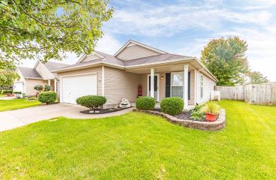 Hamilton County, Butler County, Warren County, Clermont County Single Family Home For Sale: 929 Hathaway Drive