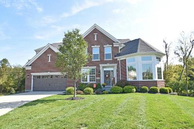 Clermont County Single Family Home For Sale: 4798 Horseshoe Bend