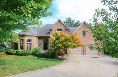Cincinnati Single Family Home For Sale: 740 Springhill Lane