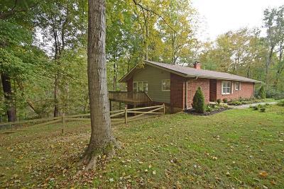 Loveland Single Family Home For Sale: 100 Seyffer Drive