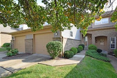 Colerain Twp Condo/Townhouse For Sale: 4194 Intrepid Drive