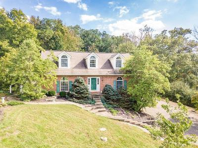 Ross Twp Single Family Home For Sale: 2890 Herman Road