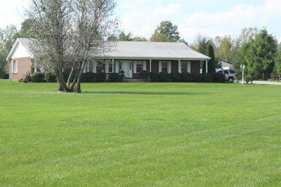 Adams County, Brown County, Clinton County, Highland County Single Family Home For Sale: 229 Tar Pike Road