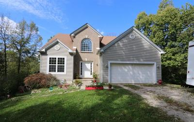 West Harrison Single Family Home For Sale: 187 Sand Run Road