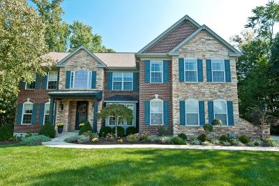 Clermont County Single Family Home For Sale: 125 Cedar Woods Drive