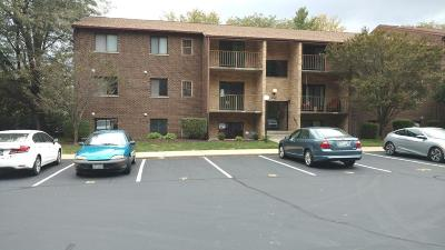 Delhi Twp Condo/Townhouse For Sale: 4270 Paul Road #4