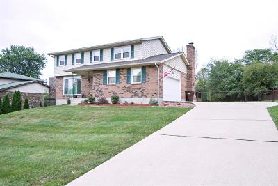Liberty Twp Single Family Home For Sale: 4428 Squaw Valley Drive