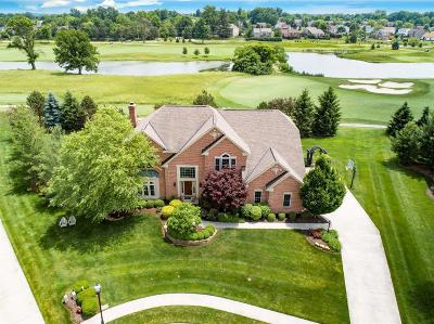 Single Family Home For Sale: 1069 Oasis Point Drive