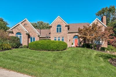 Single Family Home For Sale: 9030 Terwilligersridge Drive