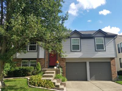 Deerfield Twp. Single Family Home For Sale: 3780 Spring Mill Way