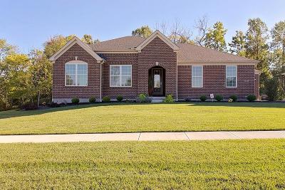 Deerfield Twp. Single Family Home For Sale: 9278 Nolin Orchard Lane