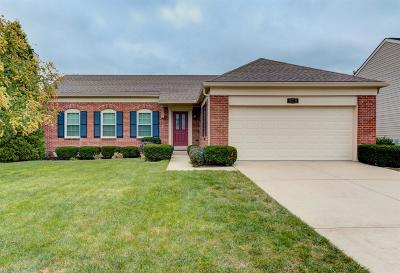 Single Family Home For Sale: 4270 N Haven Drive