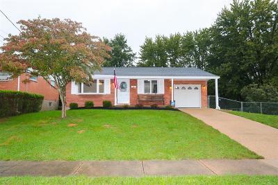 Cincinnati Single Family Home For Sale: 3248 Stevie Lane