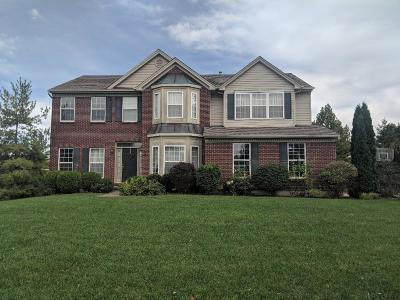 Single Family Home For Sale: 3582 Emery Lake Lane