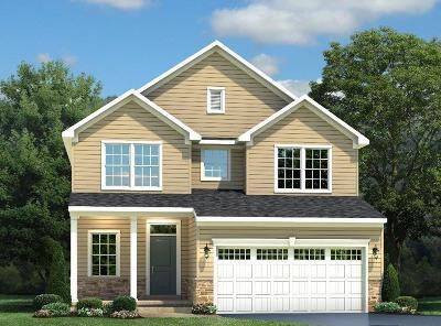 Single Family Home For Sale: 1044 Trovillo Drive