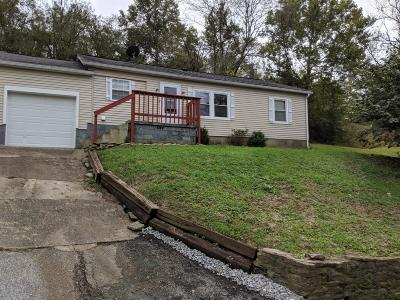 Adams County, Brown County, Clinton County, Highland County Single Family Home For Sale: 8480 Fishing Gut Road