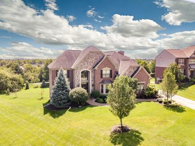 Single Family Home For Sale: 6607 Cherry Leaf Court