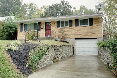 Blue Ash Single Family Home For Sale: 4790 Alpine Avenue