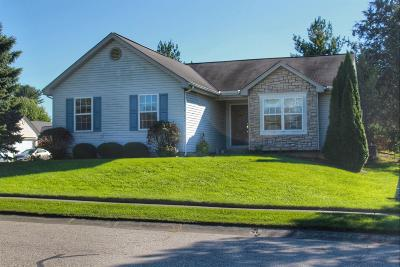 Single Family Home For Sale: 92 Catherine Court