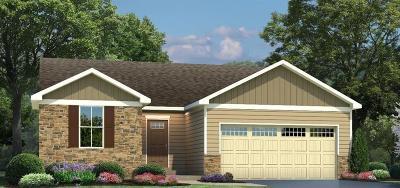 Single Family Home For Sale: 137 Sullivans Ridge Drive