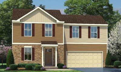 Single Family Home For Sale: 4680 Megan Danielle Drive