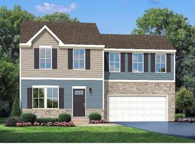 Single Family Home For Sale: 135 Sullivans Ridge Drive