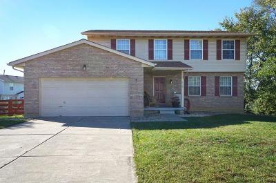 Single Family Home For Sale: 415 Granny Smith Lane
