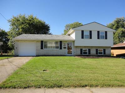 Delhi Twp Single Family Home For Sale: 4323 Glenhaven Road